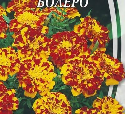 MARIGOLD BOLERO