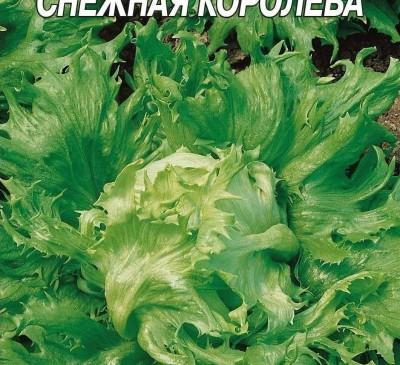 Salad Crisp Snezhnaya koroleva