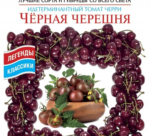 Tomato Black Sweet Cherry seeds