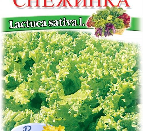 Salad Snezhinka