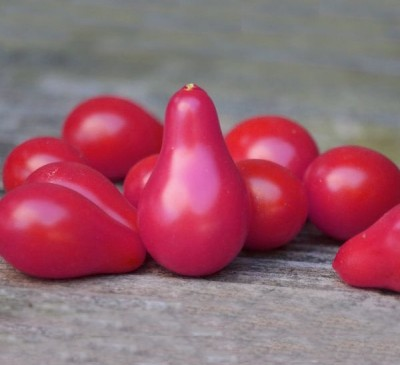 Tomato Pink Pear