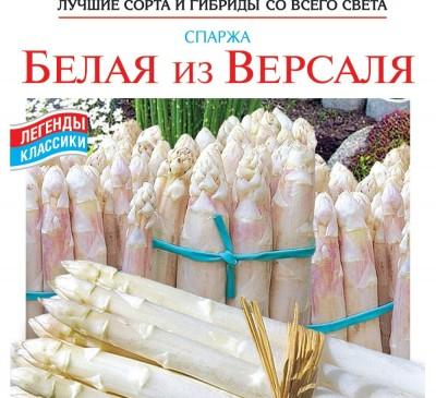 Asparagus Belaya iz Versalya