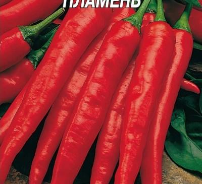 Chilli Pepper Plamen