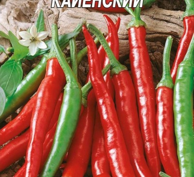 Chilli Pepper Kayenskiy