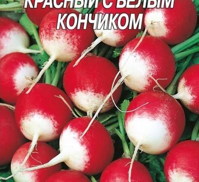 Radish Krasnyy s belym konchikom