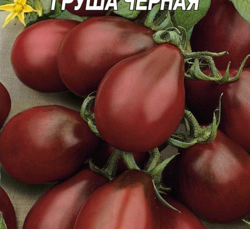 Tomato Hrusha Chorna Black Pear seeds