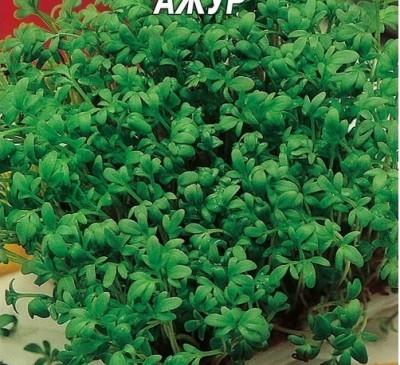 Organic Rare Seeds Salad Cress Azur