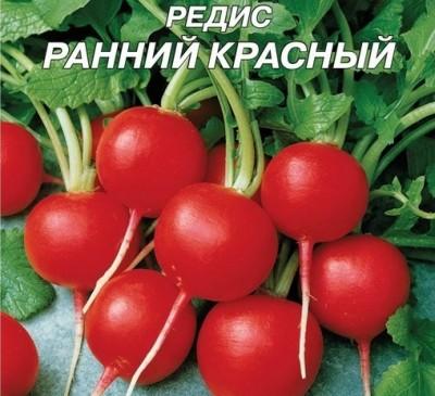 Radish Rannyy Krasnyy